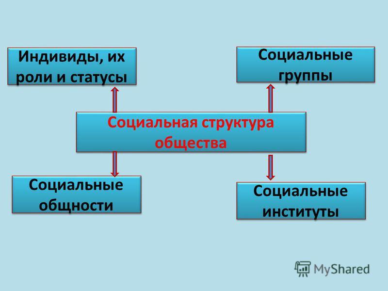 Социальная структура общества Социальная структура общества Индивиды, их роли и статусы Социальные группы Социальные группы Социальные общности Социальные общности Социальные институты Социальные институты