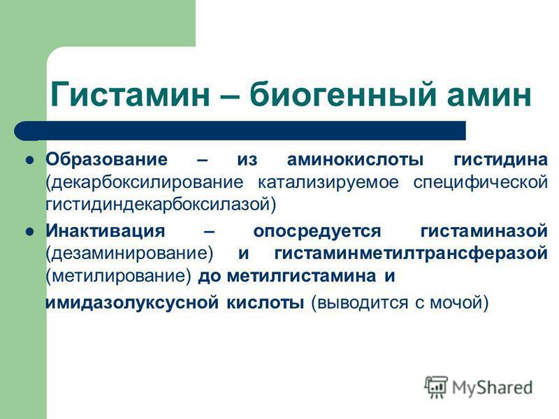 Гистамин – биогенный амин Образование – из аминокислоты гистидина (декарбоксилирование катализируемое специфической гистидиндекарбоксилазой) Инактивация – опосредуется гистаминазой (дезаминирование) и гистаминметилтрансферазой (метилирование) до мети