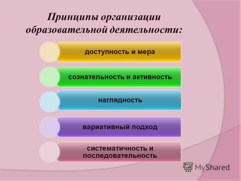 Принципы организации образовательной деятельности: доступность и мера сознательность и активность наглядность вариативный подход систематичность и последовательность