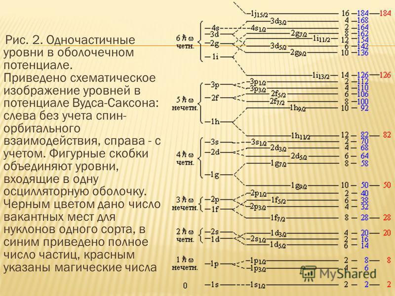 Рис. 2. Одночастичные уровни в оболочечном потенциале. Приведено схематическое изображение уровней в потенциале Вудса-Саксона: слева без учета спин- орбитального взаимодействия, справа - с учетом. Фигурные скобки объединяют уровни, входящие в одну ос