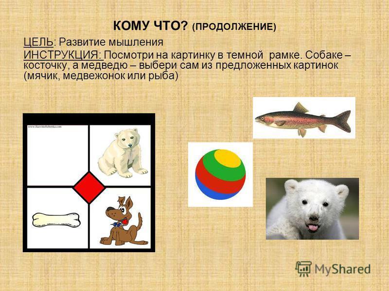 КОМУ ЧТО? (ПРОДОЛЖЕНИЕ) ЦЕЛЬ: Развитие мышления ИНСТРУКЦИЯ: Посмотри на картинку в темной рамке. Собаке – косточку, а медведю – выбери сам из предложенных картинок (мячик, медвежонок или рыба)