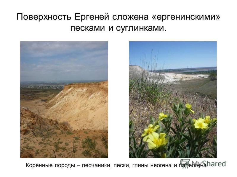 Поверхность Ергеней сложена «аргентинскими» песками и суглинками. Коренные породы – песчаники, пески, глины неогена и палеогена.