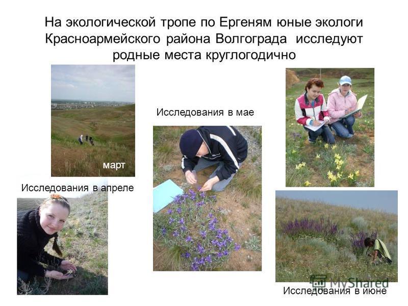 На экологической тропе по Ергеням юные экологи Красноармейского района Волгограда исследуют родные места круглогодично Исследования в апреле Исследования в июне Исследования в мае март