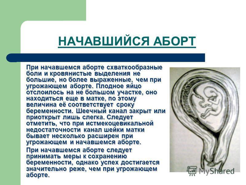 НАЧАВШИЙСЯ АБОРТ При начавшемся аборте схваткообразные боли и кровянистые выделения не большие, но более выраженные, чем при угрожающем аборте. Плодное яйцо отслоилось на не большом участке, оно находиться еще в матке, по этому величина её соответств
