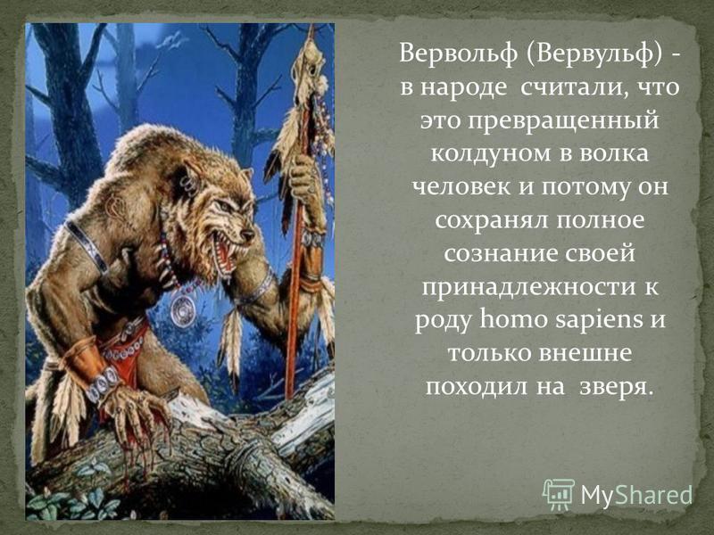 Вервольф (Вервульф) - в народе считали, что это превращенный колдуном в волка человек и потому он сохранял полное сознание своей принадлежности к роду homo sapiens и только внешне походил на зверя.