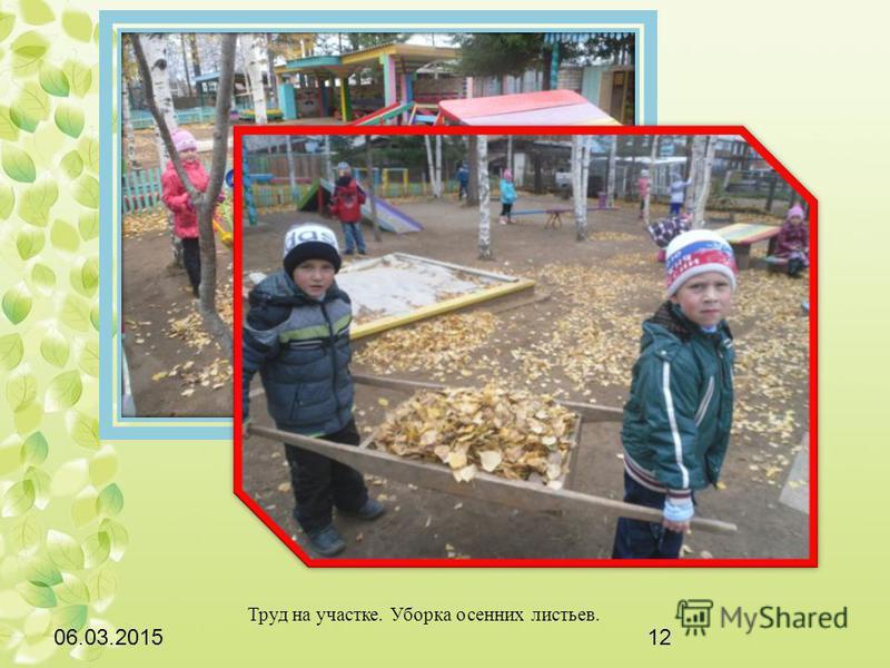 06.03.201512 Труд на участке. Уборка осенних листьев.