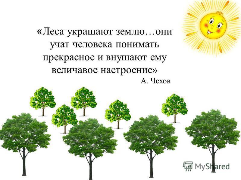 « Леса украшают землю…они учат человека понимать прекрасное и внушают ему величавое настроение» А. Чехов