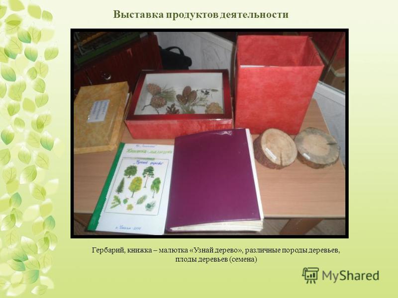 Выставка продуктов деятельности Гербарий, книжка – малютка «Узнай дерево», различные породы деревьев, плоды деревьев (семена)