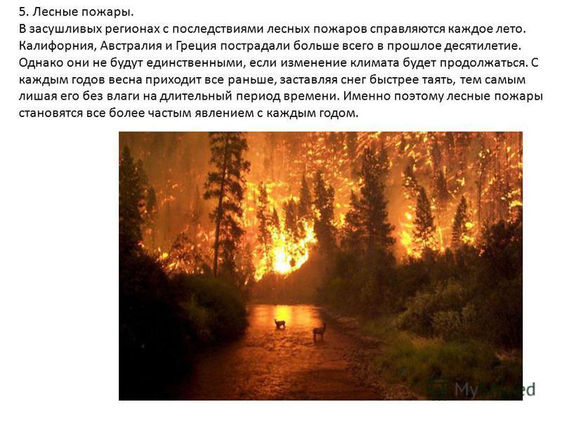 5. Лесные пожары. В засушливых регионах с последствиями лесных пожаров справляются каждое лето. Калифорния, Австралия и Греция пострадали больше всего в прошлое десятилетие. Однако они не будут единственными, если изменение климата будет продолжаться