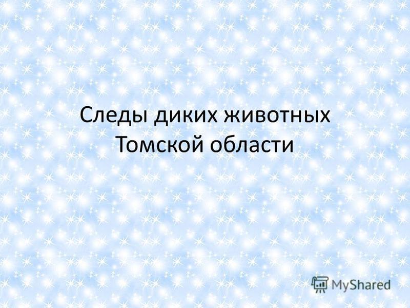 Следы диких животных Томской области