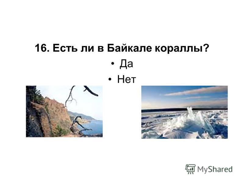 16. Есть ли в Байкале кораллы? Да Нет