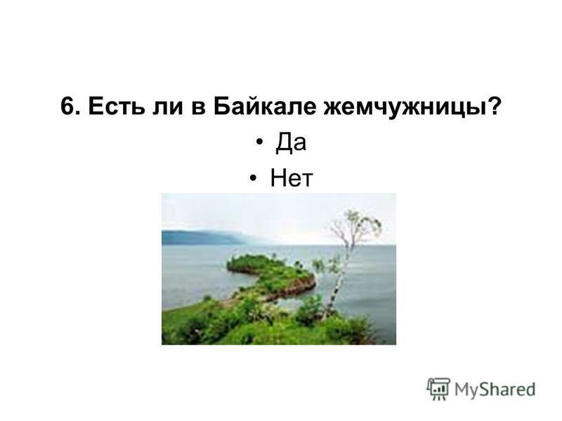6. Есть ли в Байкале жемчужницы? Да Нет