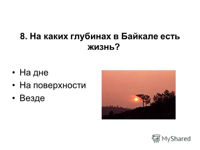 8. На каких глубинах в Байкале есть жизнь? На дне На поверхности Везде
