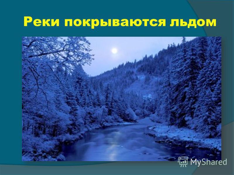 Реки покрываются льдом