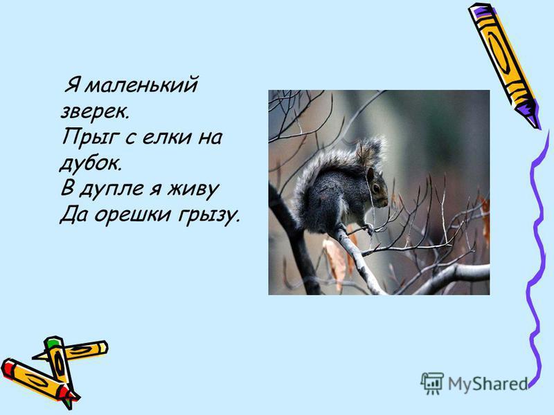 Начинаем нашу прогулку по лесу и на пути нам встречаются: Всю ночь летает - Мышей добывает. А станет светло - Спать летит в дупло.