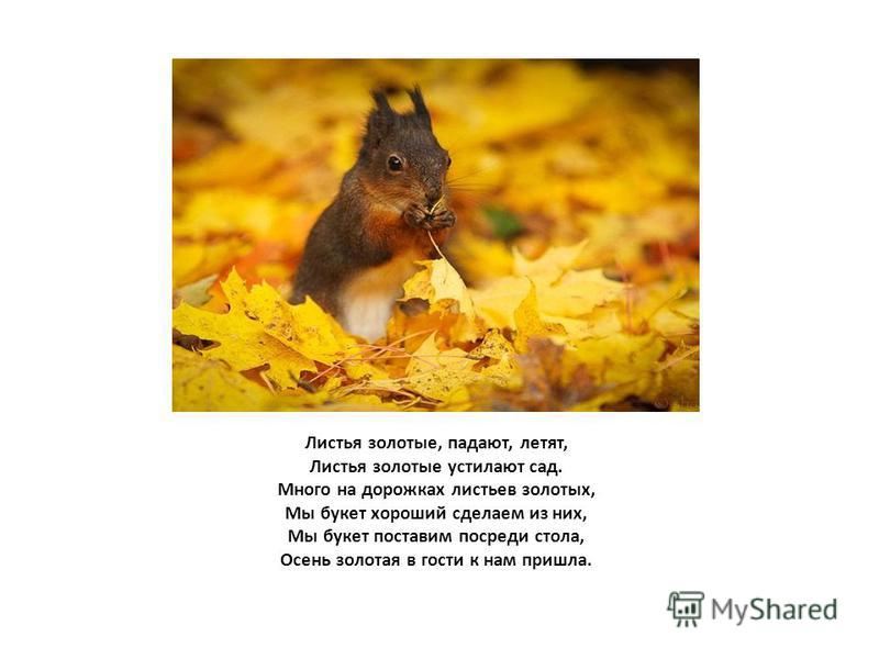 Листья золотые, падают, летят, Листья золотые устилают сад. Много на дорожках листьев золотых, Мы букет хороший сделаем из них, Мы букет поставим посреди стола, Осень золотая в гости к нам пришла.