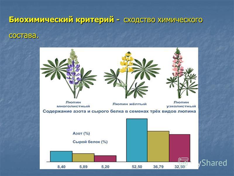 Биохимический критерий - сходство химического состава.