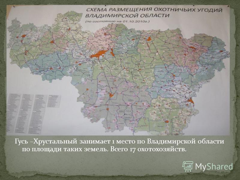Гусь –Хрустальный занимает 1 место по Владимирской области по площади таких земель. Всего 17 охотхозяйств.