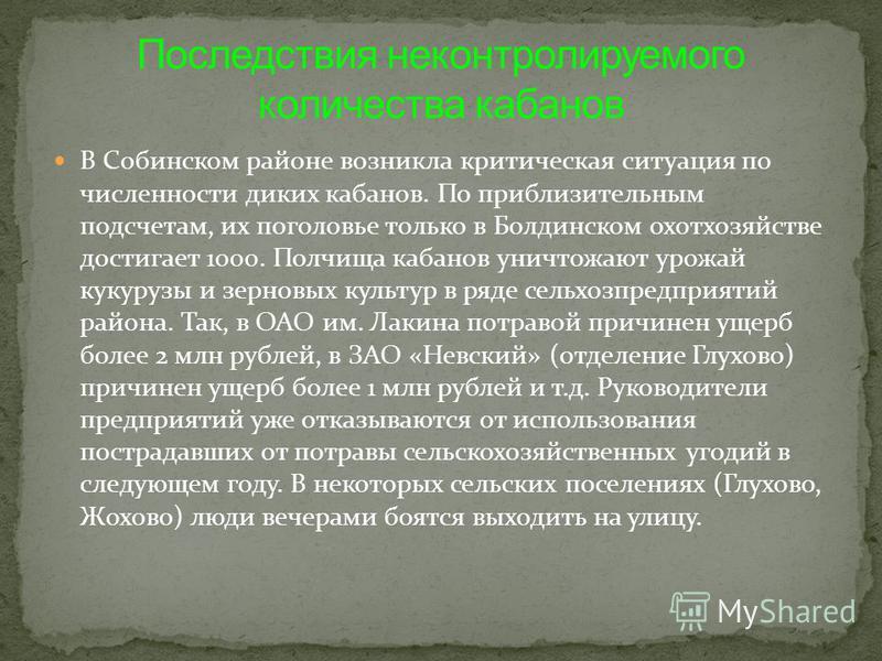 В Собинском районе возникла критическая ситуация по численности диких кабанов. По приблизительным подсчетам, их поголовье только в Болдинском охотхозяйстве достигает 1000. Полчища кабанов уничтожают урожай кукурузы и зерновых культур в ряде сельхозпр