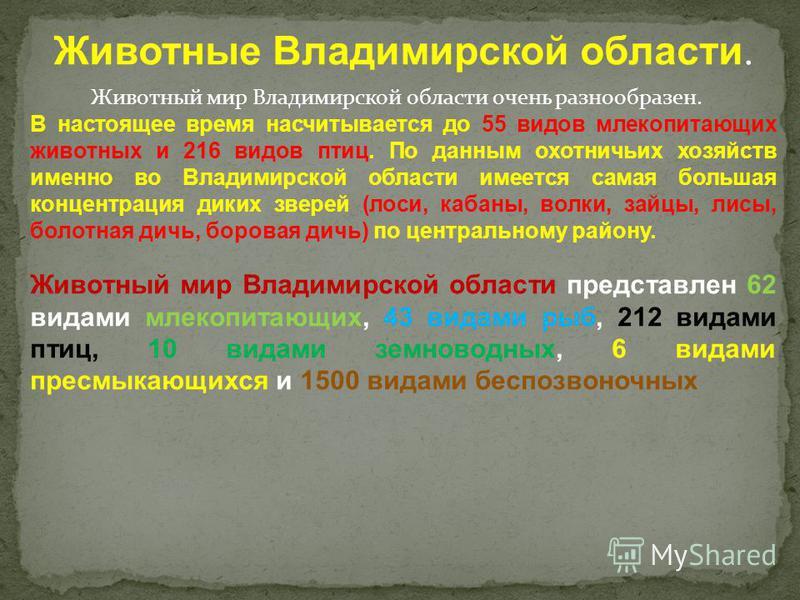 Животные Владимирской области. Животный мир Владимирской области очень разнообразен. В настоящее время насчитывается до 55 видов млекопитающих животных и 216 видов птиц. По данным охотничьих хозяйств именно во Владимирской области имеется самая больш