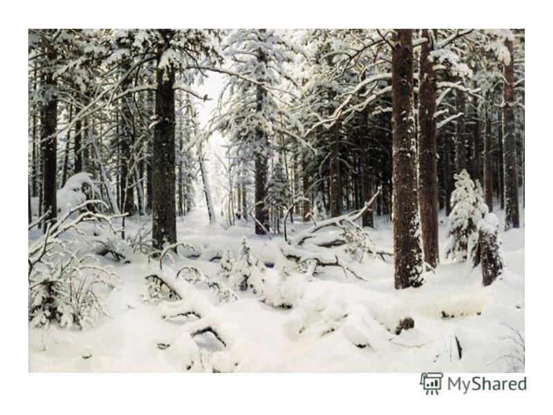 Погодные явления зимой картинки
