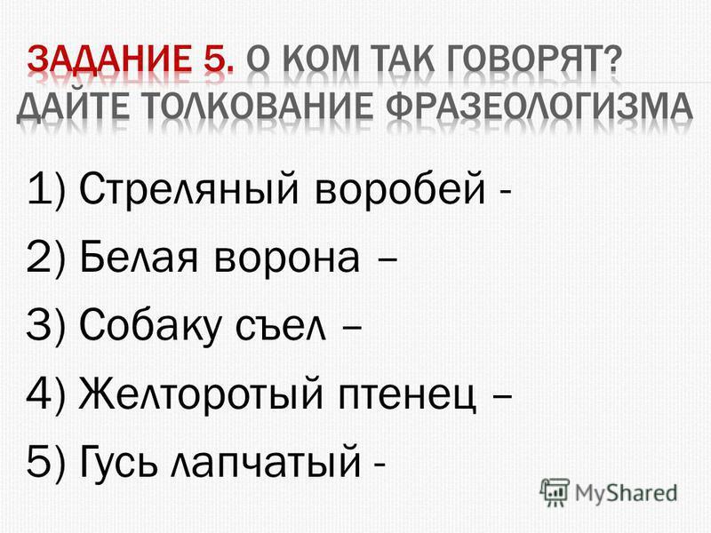 1) Стреляный воробей - 2) Белая ворона – 3) Собаку съел – 4) Желторотый птенец – 5) Гусь лапчатый -
