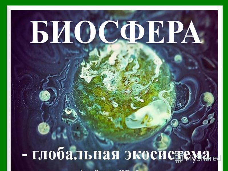биосфера 06.03.2015 МОУ СОШ 2
