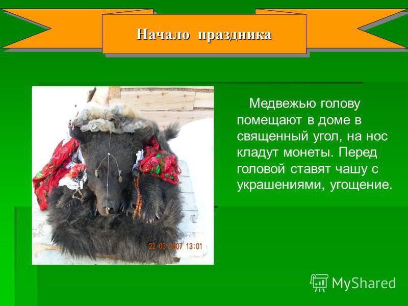 Начало праздника Медвежью голову помещают в доме в священный угол, на нос кладут монеты. Перед головой ставят чашу с украшениями, угощение.