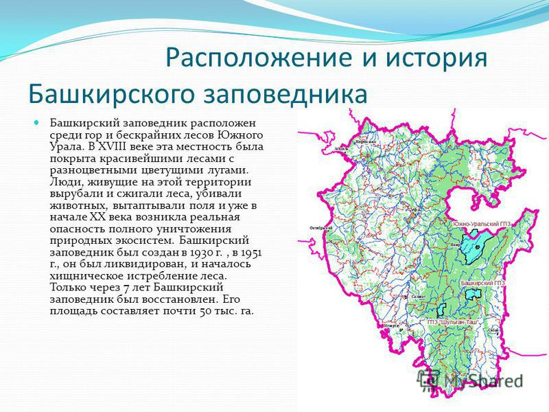 Расположение и история Башкирского заповедника Башкирский заповедник расположен среди гор и бескрайних лесов Южного Урала. В XVIII веке эта местность была покрыта красивейшими лесами с разноцветными цветущими лугами. Люди, живущие на этой территории
