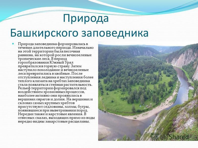 Природа Башкирского заповедника Природа заповедника формировалась в течение длительного периода. Изначально на этой территории была песочная равнина, на которой росли вечнозеленые тропические леса. В период горообразования Южный Урал превратился в го