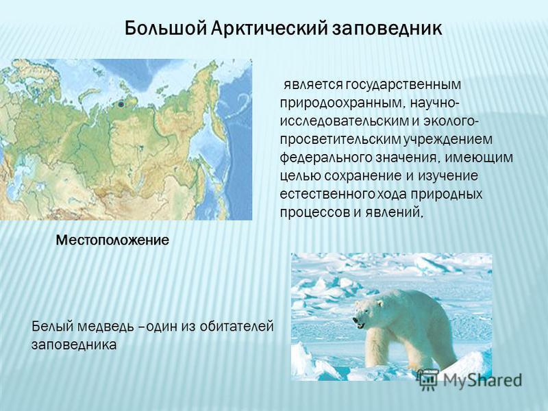 Большой Арктический заповедник Местоположение является государственным природоохранным, научно- исследовательским и эколого- просветительским учреждением федерального значения, имеющим целью сохранение и изучение естественного хода природных процессо