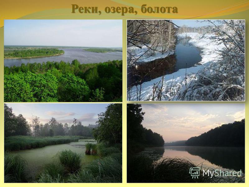 Реки, озера, болота