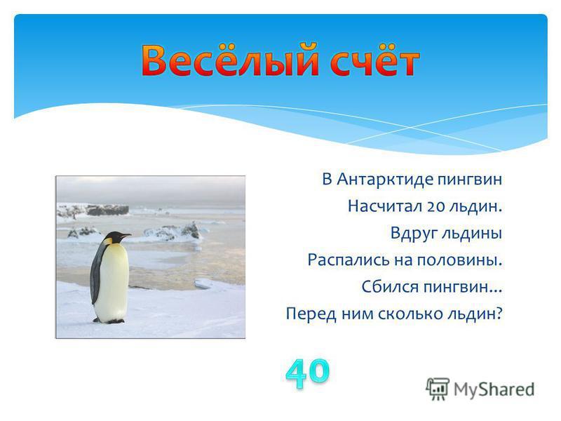 В Антарктиде пингвин Насчитал 20 льдин. Вдруг льдины Распались на половины. Сбился пингвин... Перед ним сколько льдин?