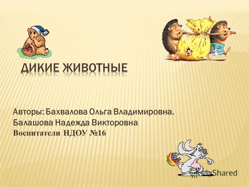 Авторы: Бахвалова Ольга Владимировна. Балашова Надежда Викторовна. Воспитатели НДОУ 16