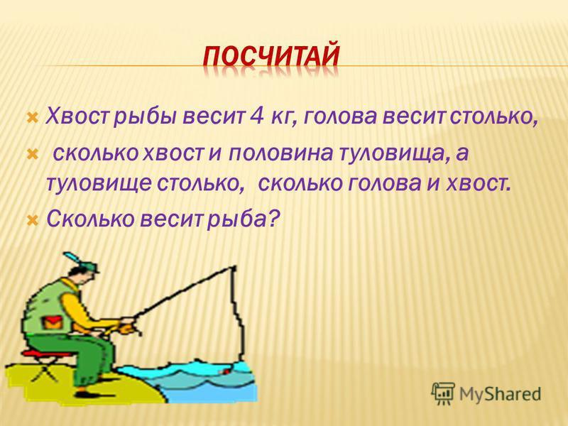 Хвост рыбы весит 4 кг, голова весит столько, сколько хвост и половина туловища, а туловище столько, сколько голова и хвост. Сколько весит рыба?