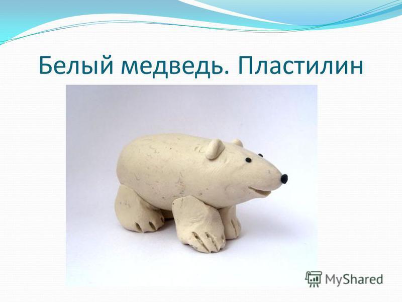 Белый медведь. Пластилин