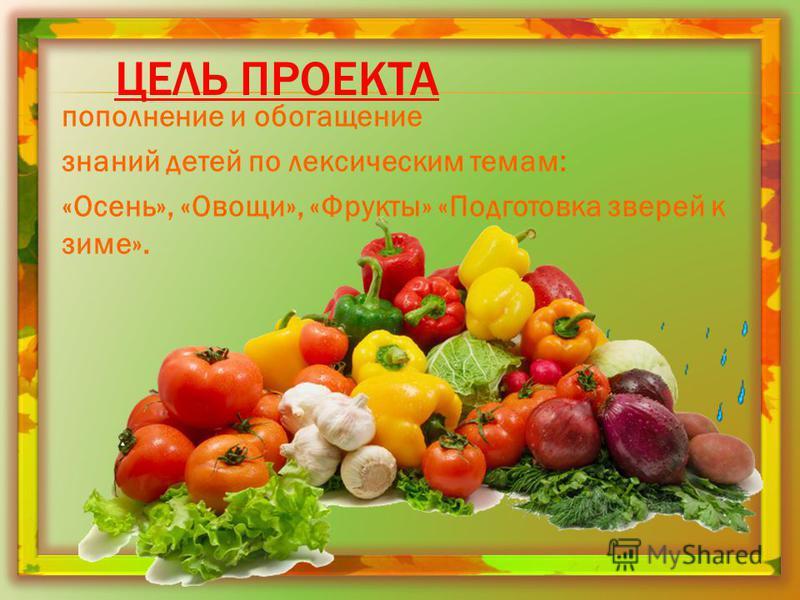 ЦЕЛЬ ПРОЕКТА пополнение и обогащение знаний детей по лексическим темам: «Осень», «Овощи», «Фрукты» «Подготовка зверей к зиме».