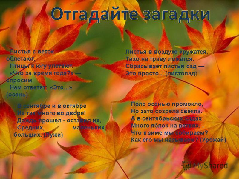 Листья с веток облетают, Птицы к югу улетают. «Что за время года?» спросим. Нам ответят: «Это...» (осень) Листья в воздухе кружатся, Тихо на траву ложатся. Сбрасывает листья сад Это просто... (листопад) В сентябре и в октябре Их так много во дворе! Д