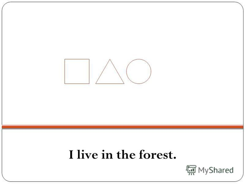 I live in the forest.