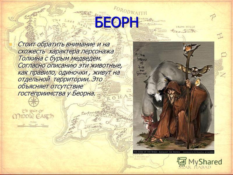 БЕОРН Стоит обратить внимание и на схожесть характера персонажа Толкина с бурым медведем. Согласно описанию эти животные, как правило, одиночки, живут на отдельной территории. Это объясняет отсутствие гостеприимства у Беорна. Стоит обратить внимание