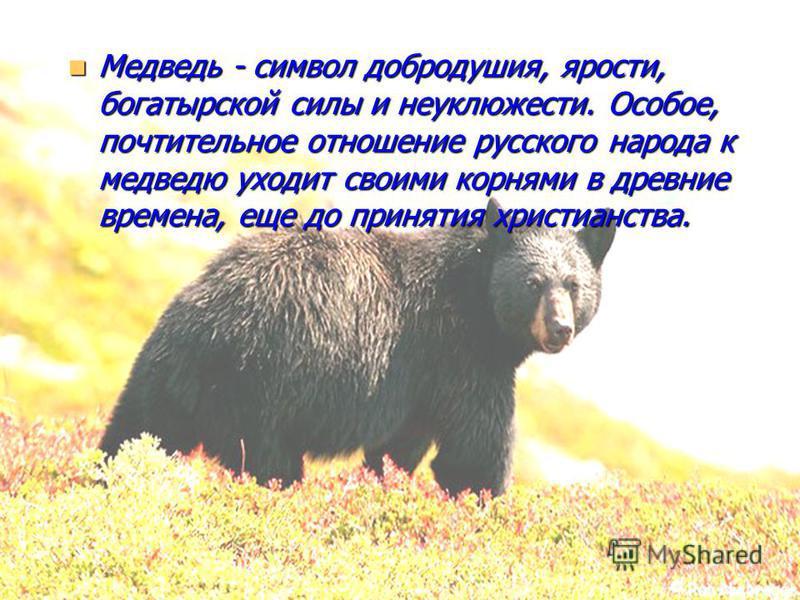 Медведь - символ добродушия, ярости, богатырской силы и неуклюжести. Особое, почтительное отношение русского народа к медведю уходит своими корнями в древние времена, еще до принятия христианства. Медведь - символ добродушия, ярости, богатырской силы