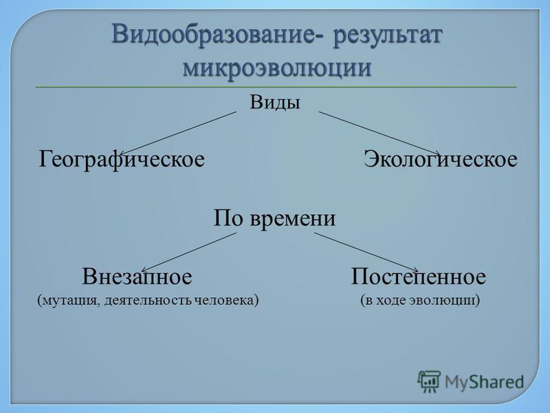 Виды Географическое Экологическое По времени Внезапное Постепенное (мутация, деятельность человека) (в ходе эволюции)