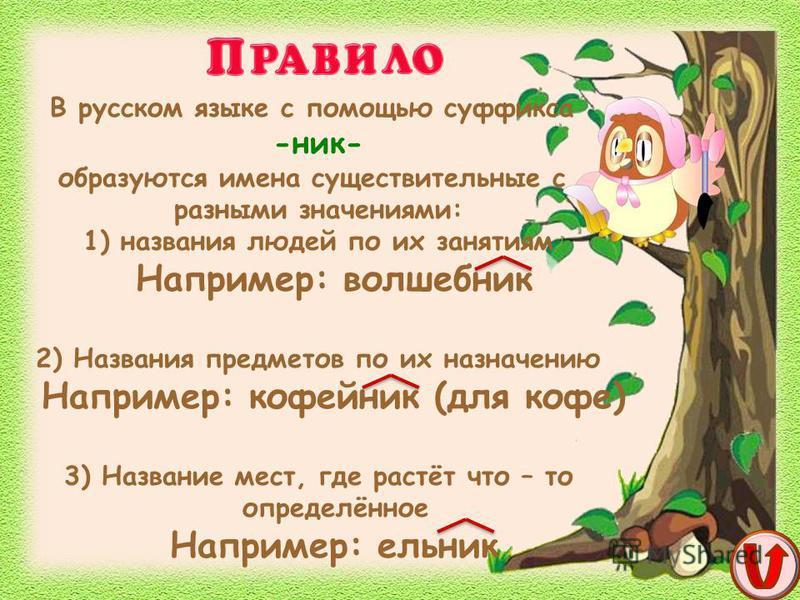В русском языке с помощью суффикса -ник- образуются имена существительные с разными значениями: 1) названия людей по их занятиям Например: волшебник 2) Названия предметов по их назначению Например: кофейник (для кофе) 3) Название мест, где растёт что
