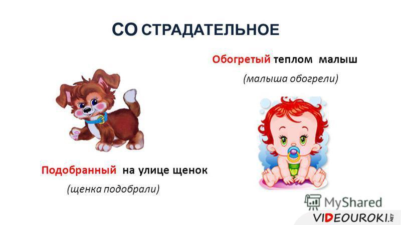СТРАДАТЕЛЬНОЕ Подобранный на улице щенок (щенка подобрали) Обогретый теплом малыш (малыша обогрели) СО