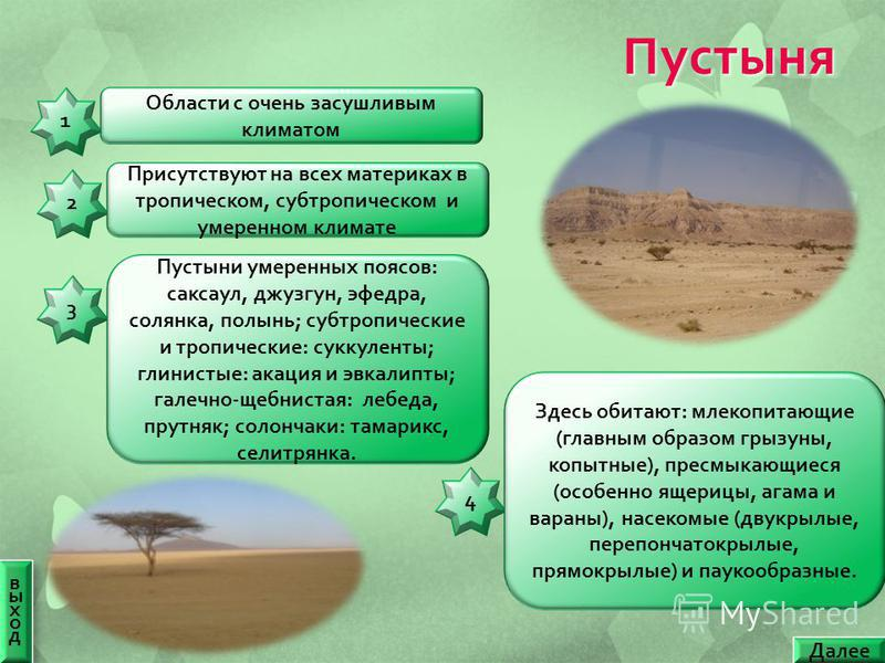 Пустыня выход выход Далее 11 Области с очень засушливым климатом 44 Здесь обитают : млекопитающие ( главным образом грызуны, копытные ), пресмыкающиеся ( особенно ящерицы, агама и вараны ), насекомые ( двукрылые, перепончатокрылые, прямокрылые ) и па
