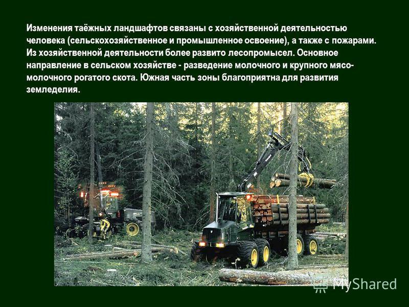 Изменения таёжных ландшафтов связаны с хозяйственной деятельностью человека (сельскохозяйственное и промышленное освоение), а также с пожарами. Из хозяйственной деятельности более развито леса промысел. Основное направление в сельском хозяйстве - раз