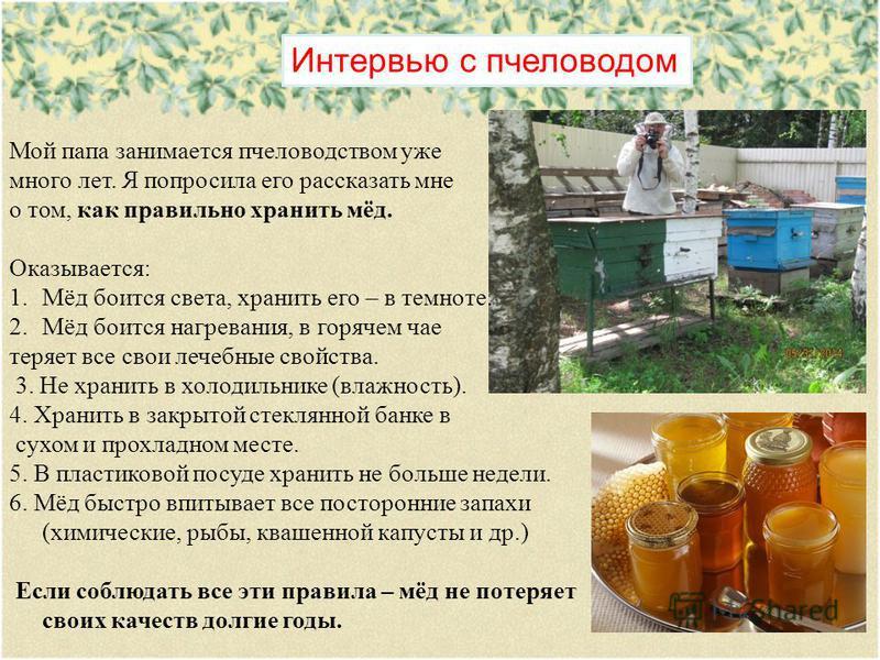Интервью с пчеловодом Мой папа занимается пчеловодством уже много лет. Я попросила его рассказать мне о том, как правильно хранить мёд. Оказывается: 1.Мёд боится света, хранить его – в темноте. 2.Мёд боится нагревания, в горячем чае теряет все свои л