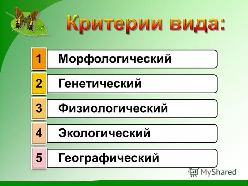 Морфологический 1 Генетический 2 Физиологический 3 Экологический 4 Географический 5