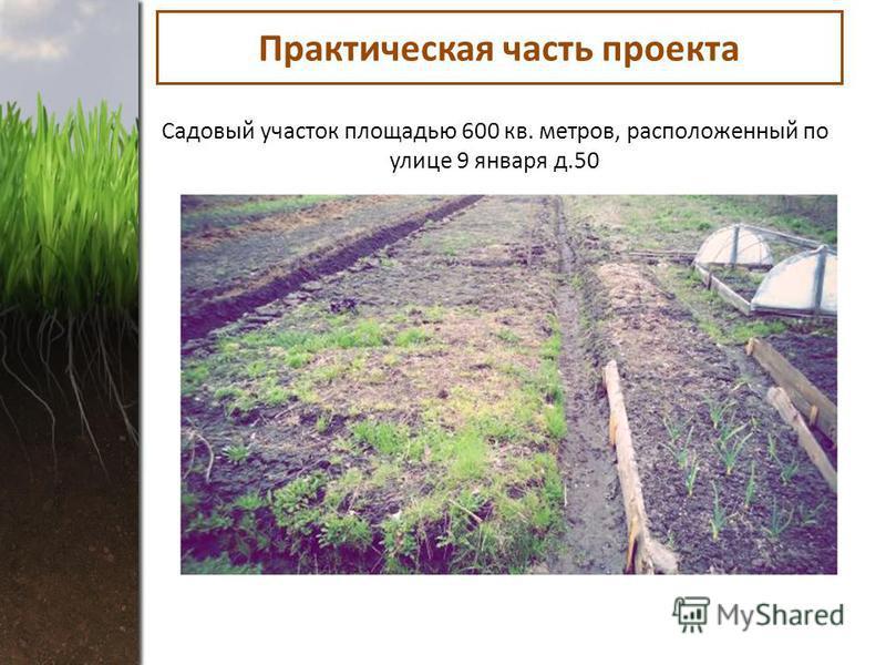 Практическая часть проекта Садовый участок площадью 600 кв. метров, расположенный по улице 9 января д.50
