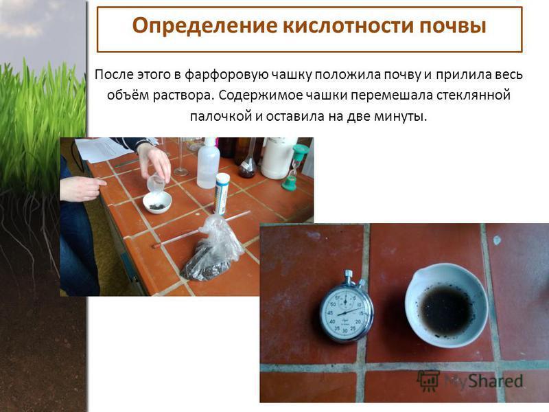 После этого в фарфоровую чашку положила почву и прилила весь объём раствора. Содержимое чашки перемешала стеклянной палочкой и оставила на две минуты. Определение кислотности почвы